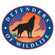 defnders-of-wildlife